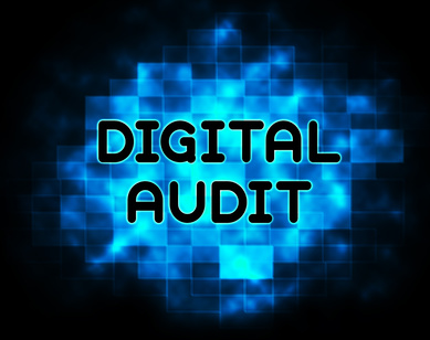 Digital Audit Cyber Network Examination 2d Illustration Shows Analysis By Auditor Of Digital Information Or Virtual Resources